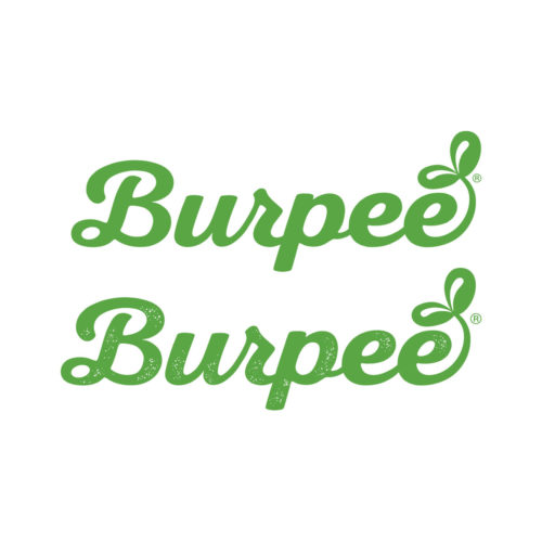 burpee logo exploration