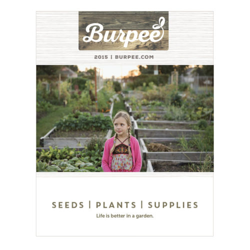burpee-seed-catalog-parksgroupboulder
